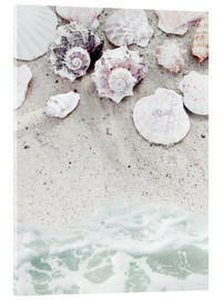 Acrylic print  Beach with Shells