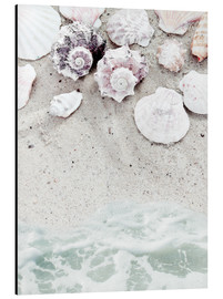 Aluminium print  Beach with Shells