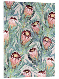 Acrylic print  Pale Painted Protea Neriifolia - Micklyn Le Feuvre