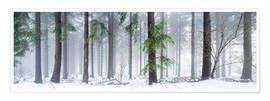 Premium poster Bavarian Forest as panorama in winter