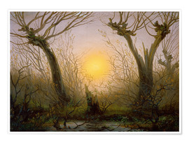 Premium poster Willows low sun