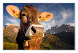 Poster Mountain Moo(d)