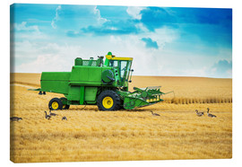 Canvas print  Harvest on the field