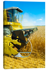 Canvas print  Combine harvester at work
