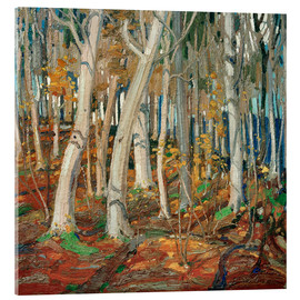 Acrylic print  Maple Woods, Bare Trunks - Tom Thomson