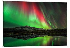 Canvas print  Aurora borealis, Norway - Tommy Eliassen