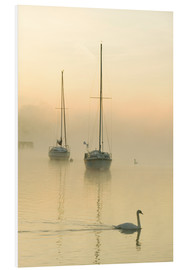Foam board print  A misty morning over Lake Windermere, UK - Ashley Cooper