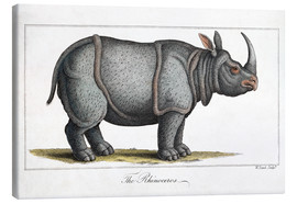 Canvas print  Indian Rhinoceros, 1823 - Paul D. Stewart