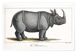 Premium poster Indian Rhinoceros, 1823