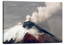 Canvas print  Ash plume rising from Cotopaxi volcano - Morley Read