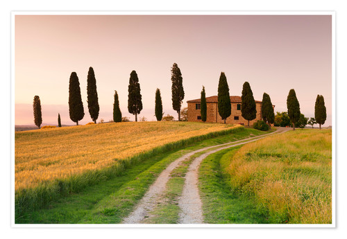 Premium poster Country house behind cypress trees