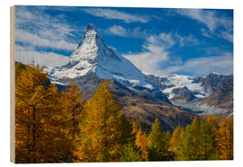 Wood  Matterhorn and larch tree forest in autumn, Valais, Swiss Alps, Switzerland, Europe - Patrick Frischknecht