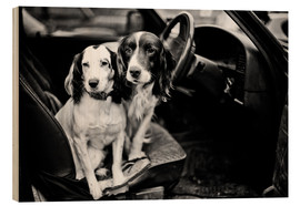 Wood print  dogs in the car - John Alexander