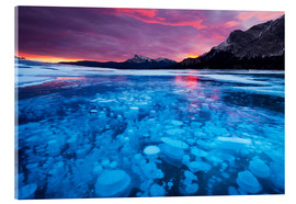 Acrylic print  Bubbles and cracks in the ice, Abraham Lake - Miles Ertman