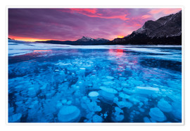 Premium poster Bubbles and cracks in the ice, Abraham Lake