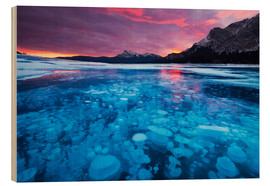 Wood print  Bubbles and cracks in the ice, Abraham Lake - Miles Ertman