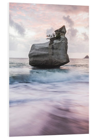 Foam board print  Cathedral Cove at sunrise, New Zealand - Matthew Williams-Ellis