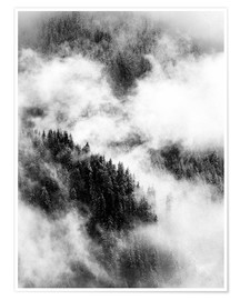 Premium poster Cloudy treetops on the mountain slopes