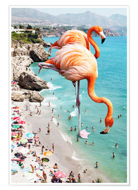 Premium poster  Flamingos on the beach - Uma 83 Oranges