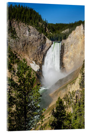 Michael DeFreitas - Lower Falls, Yellowstone National Park