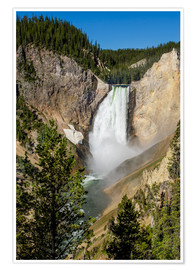 Premium poster Lower Falls, Yellowstone National Park