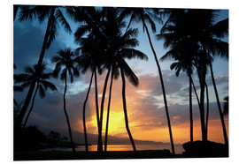 Foam board print  Sunset in Maui - Ron Dahlquist