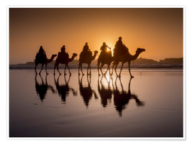 Premium poster  Camel walk on the beach - Charles Bowman