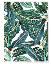 Premium poster Botanical leaves