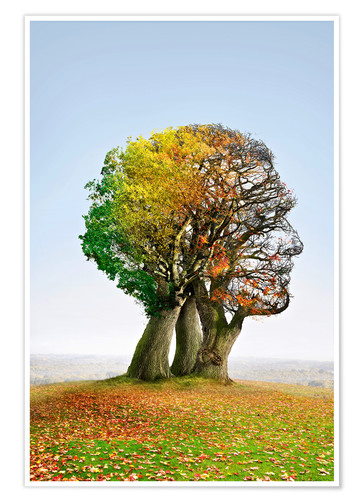 Premium poster The tree of life