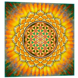 Forex  Flower of Life - Yellow Lotus - Dirk Czarnota