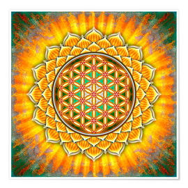 Premium poster Flower of life - yellow lotus