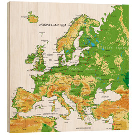 Wood  Europe - Topographic Map