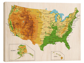 Wood print  Topographic Map of USA