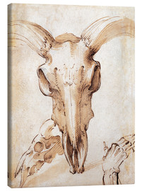 Canvas print  Skull of a cow - Leonardo da Vinci