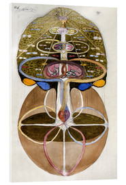Acrylic print  Tree of Knowledge, No. 1 - Hilma af Klint