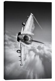 Canvas  Typhoon Knife Edge mono - airpowerart