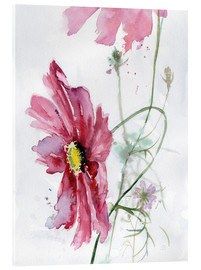 Acrylic print  Cosmos flower watercolor - Verbrugge Watercolor