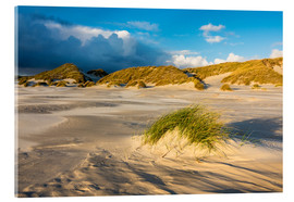 Acrylic print  Dunes on the island of Amrum, North Sea