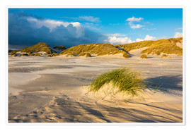 Dunes on the island of Amrum, North Sea