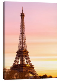 Canvas  Beautiful Light in Paris - Mike Clegg Photography