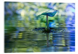Acrylic print  Water drops with bokeh - Stephan Geist