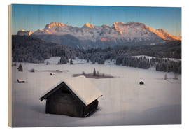 Wood  Geroldsee at wintertime, Bavarian , Germany - Frank Fischbach