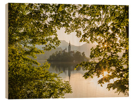 Wood print  Bled in the morning, Slovenia - Mike Clegg Photography