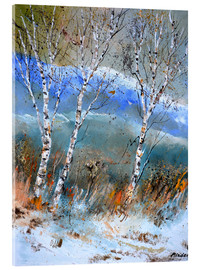 Acrylic print  Birches in the winter - Pol Ledent