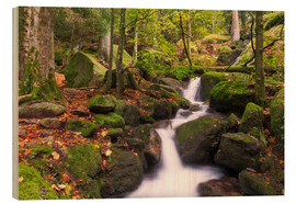 Wood print  Gertelsbacher Waterfalls, Black Forest, Germany - Frank Fischbach
