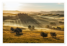 Poster  Dawn in Tuscany, Italy - Frank Fischbach