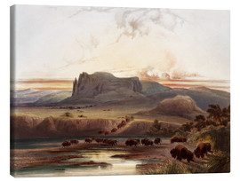 Canvas  herd of buffaloes on the upper missouri - Karl Bodmer
