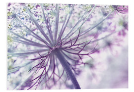Foam board print   Allium - Atteloi