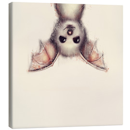 Canvas print  Hang in there, bat - Romina Lutz