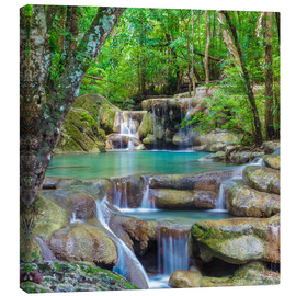 Canvas print  Small waterfall in a forest